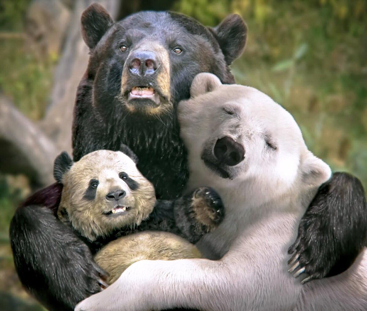 Смешная картинка про семью