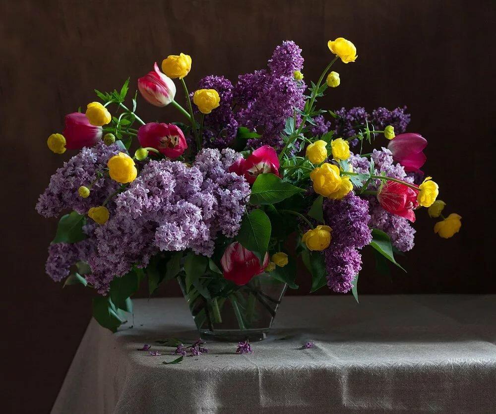 сирень и тюльпаны букет картинки тут можно