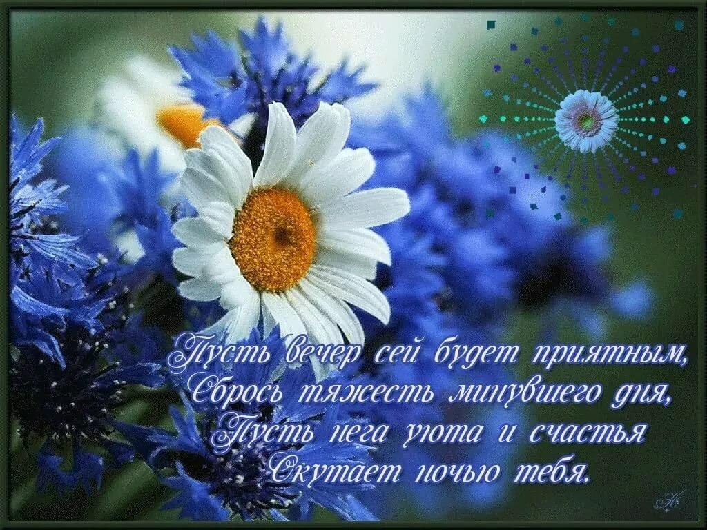 Поздравления с добрым вечером в картинках с фото и стихами красивые, лет