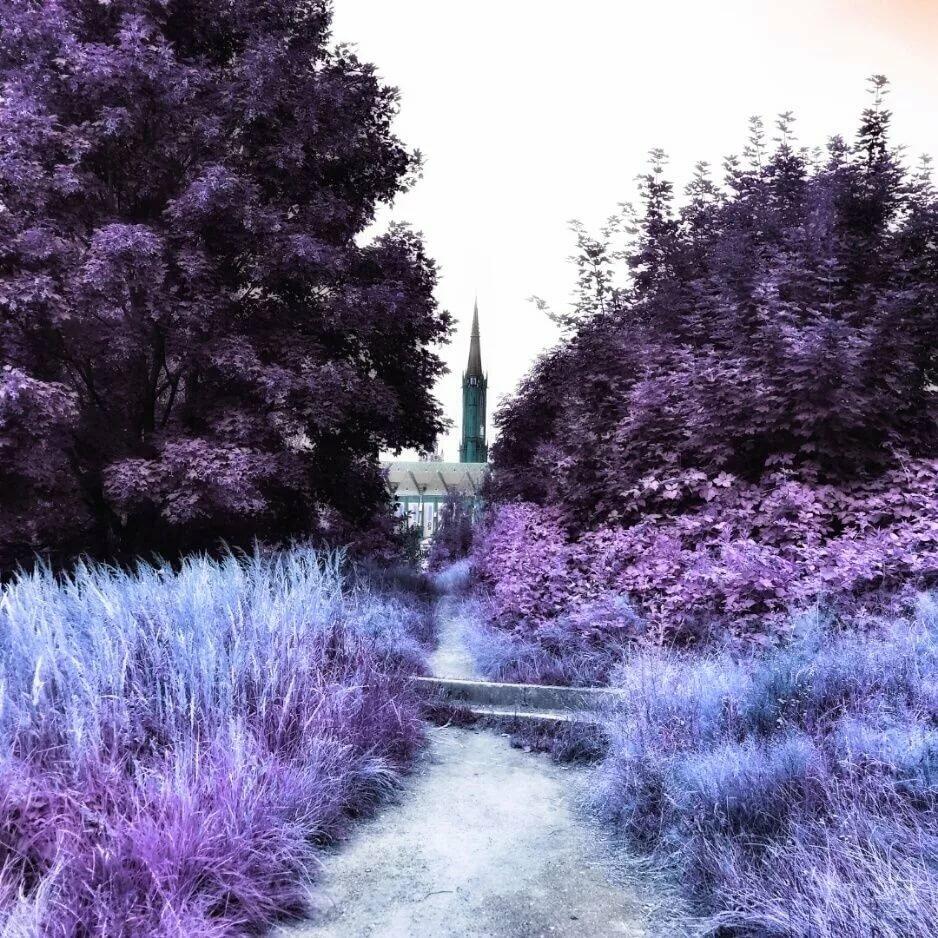 должна красивые картинки в фиолетовых тонах для инстаграмма таких
