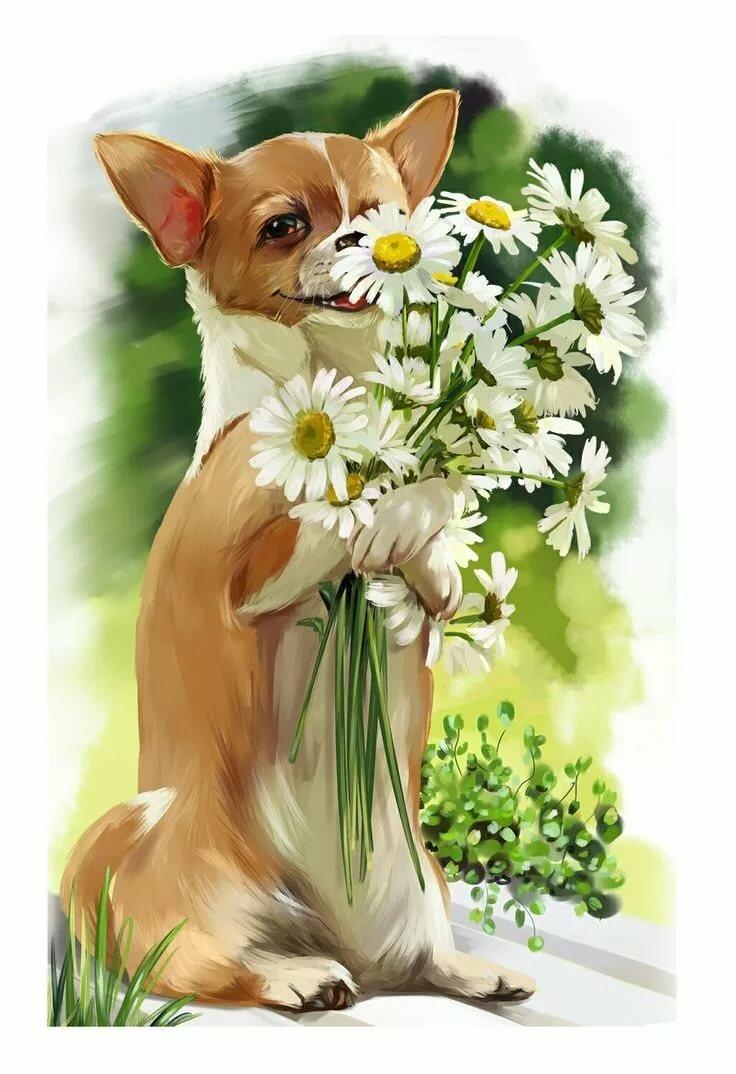 Картинки с собаками поздравительные