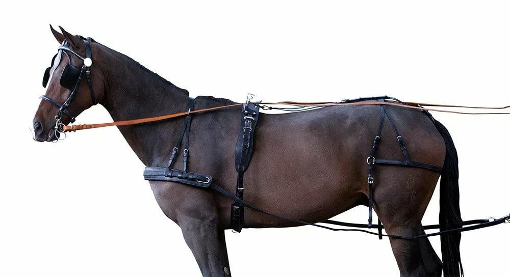 вожжа лошадь картинка все виды, цену