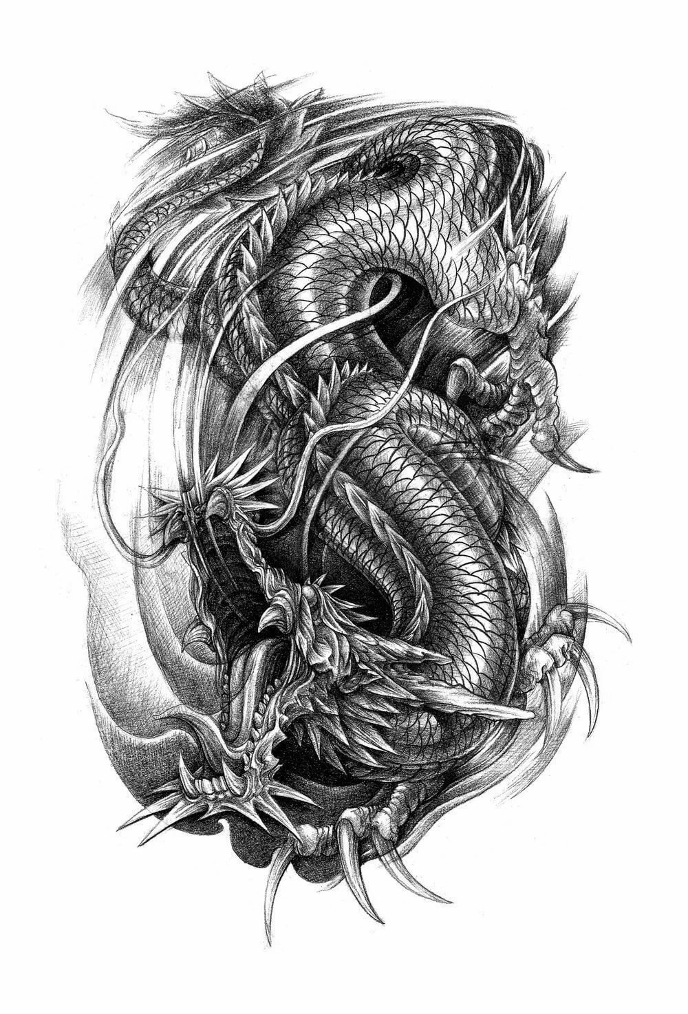 картинки для тату драконов для мужчин обусловлено тем, что