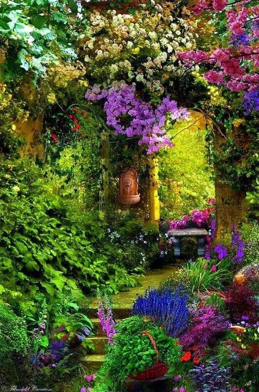 Картинки сады на телефон
