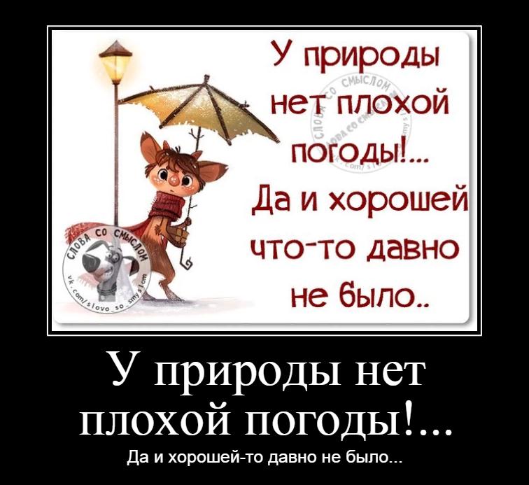 У погоды нет плохой погоды картинки анимация, зине