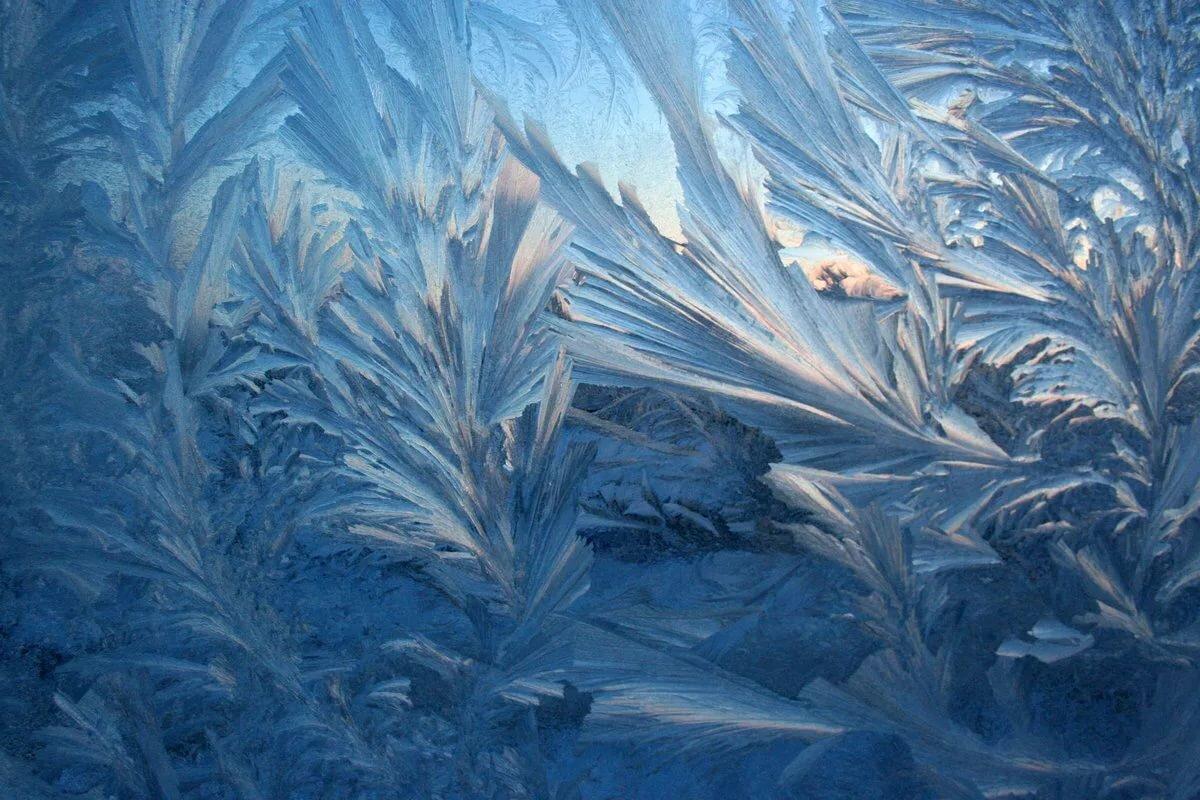 Картинки мороз узоры