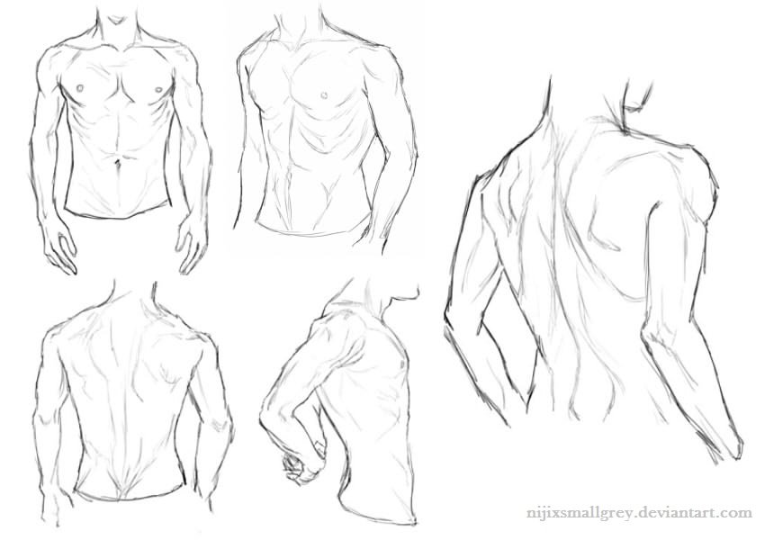 This is an image of Effortless Anime Abs Drawing