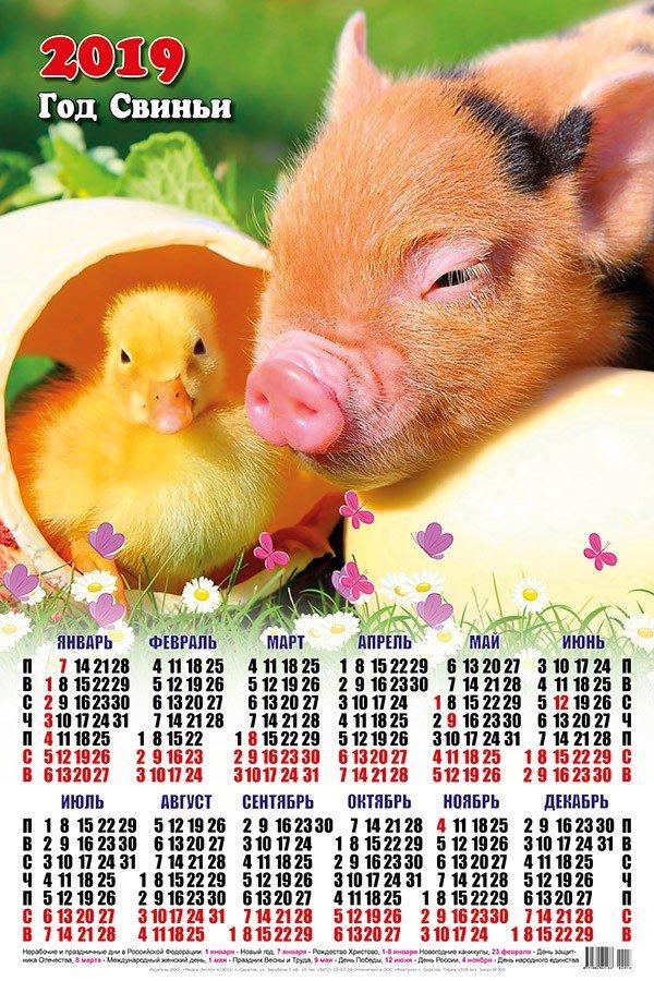 Яндекс картинки календарь 2019, картинки про
