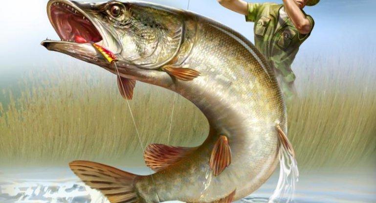 Открытка хорошего отдыха на рыбалке