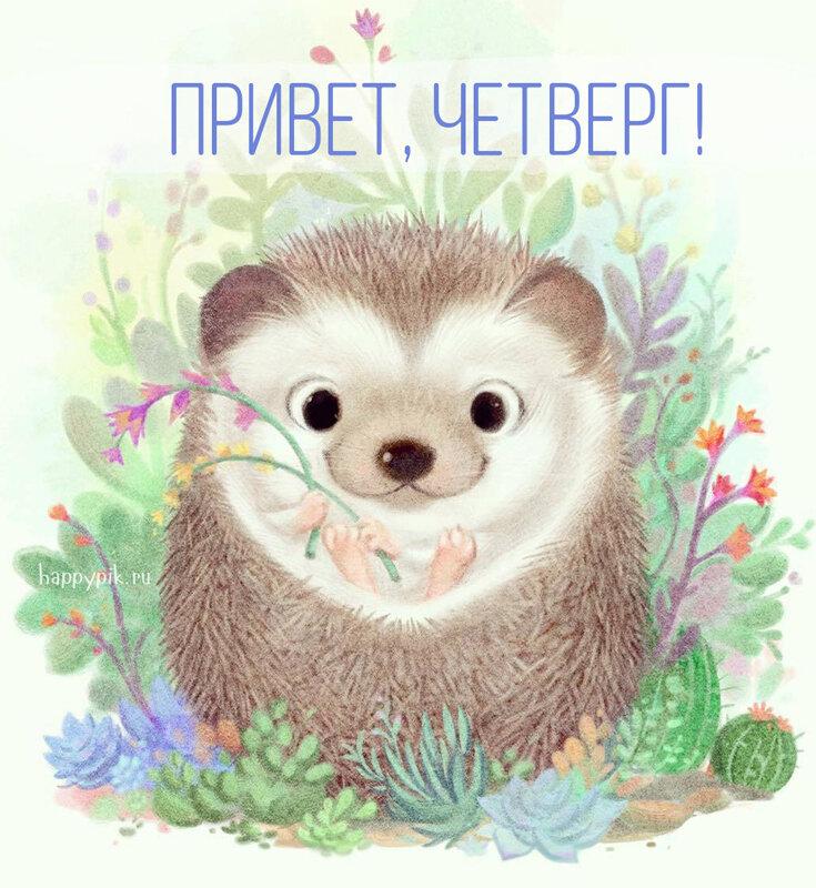 Картинки четверг с животными, отпуск зимой открытки