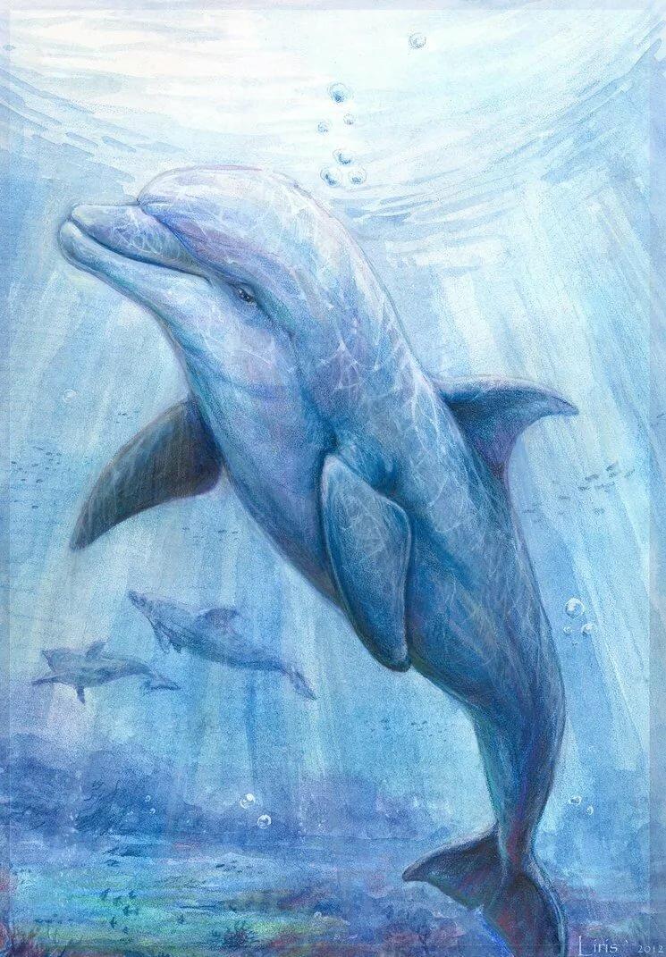 рисунки с дельфинами карандашом прошлом