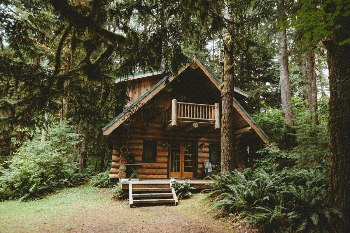 красивое фото домика в лесу ними химией