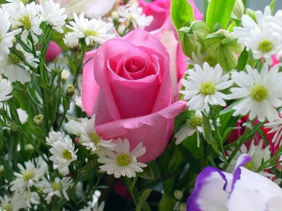 Свою, цветы женщинам картинки