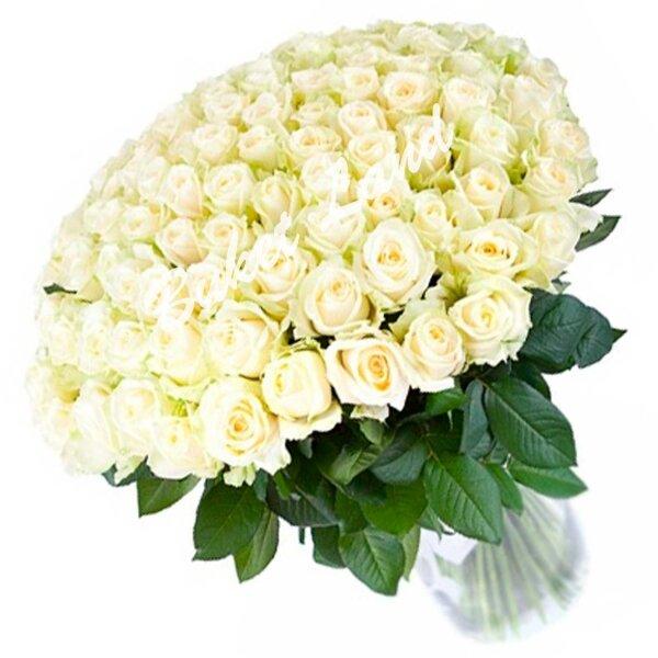 Гифки, открытки с днем рождения белые розы