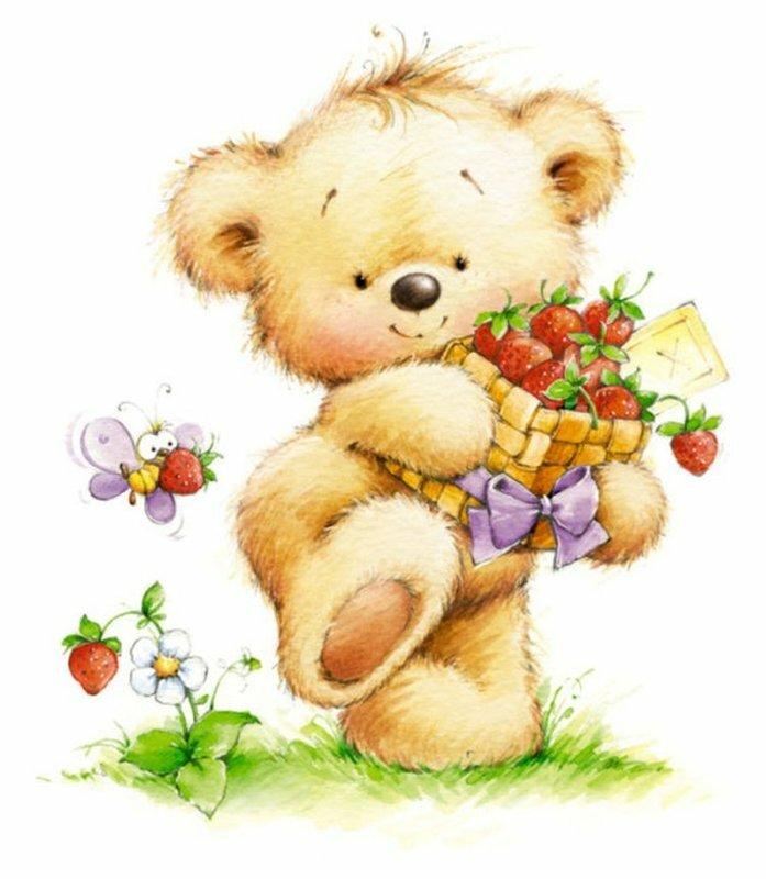 Медвежата красивые открытки, белые картинки