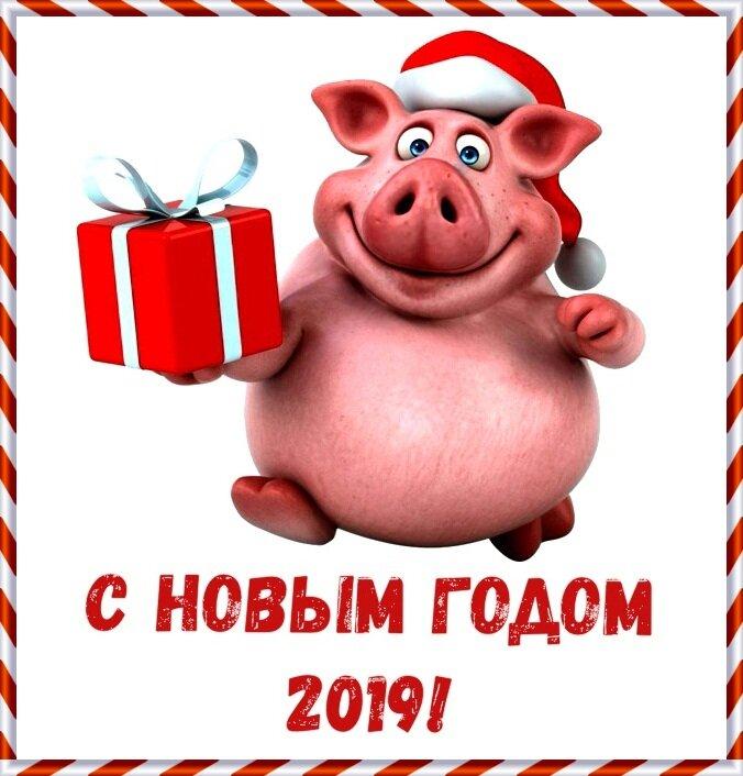 Прикол открытки с новым годом 2019
