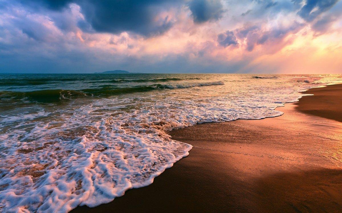 Красивые картинки про море, поросенок новым
