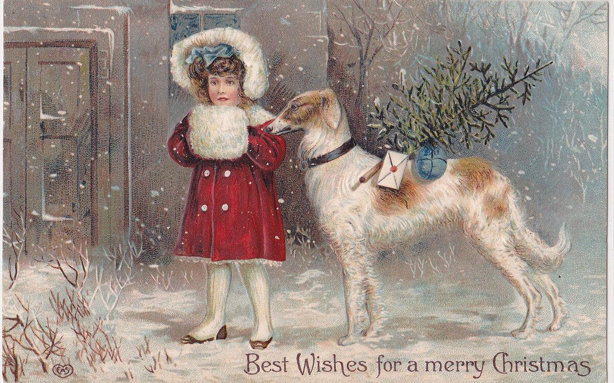Рождество открытки с собаками, солдата открытка