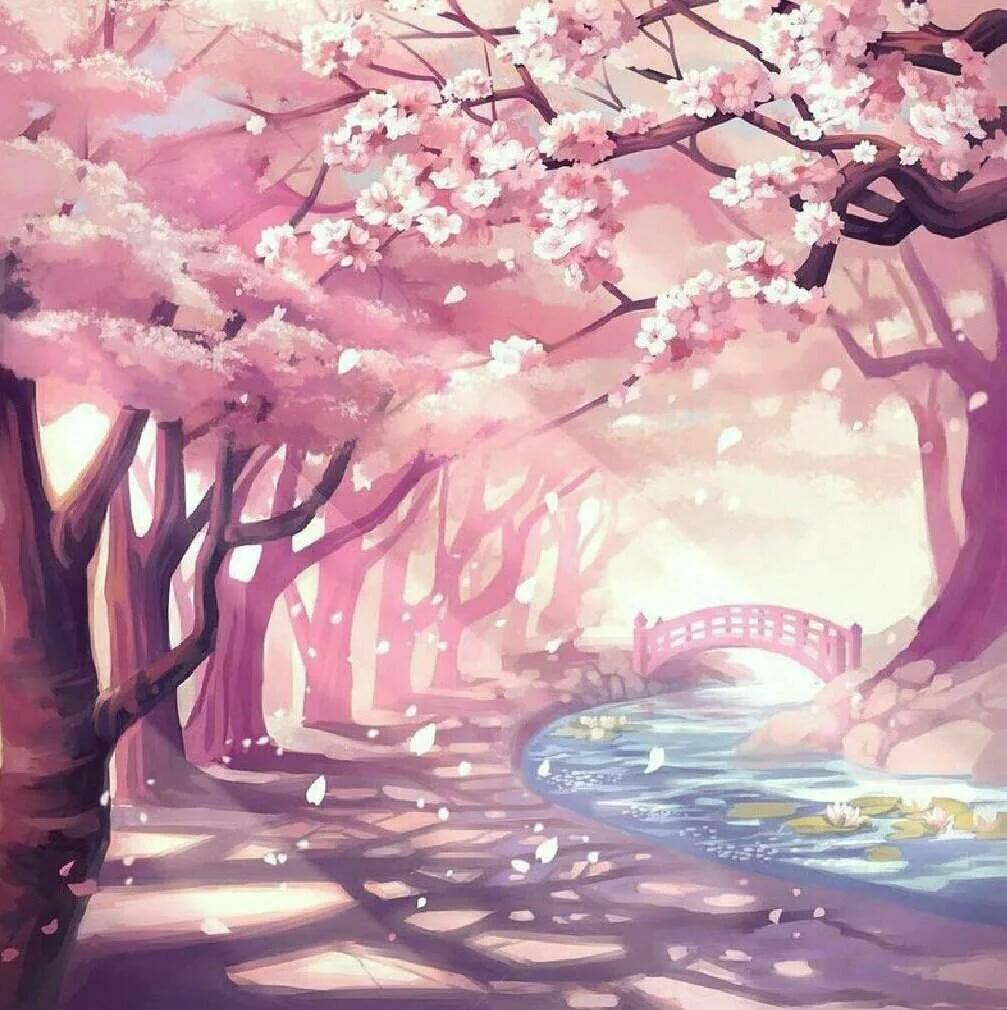 Природа картинки рисунки сакура