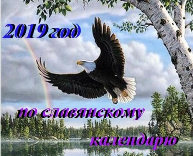 Картинки, картинки с надписями год парящего орла