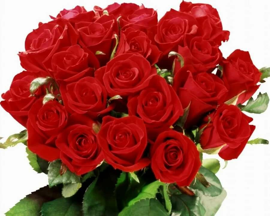 Грамоты, букеты роз в открытках