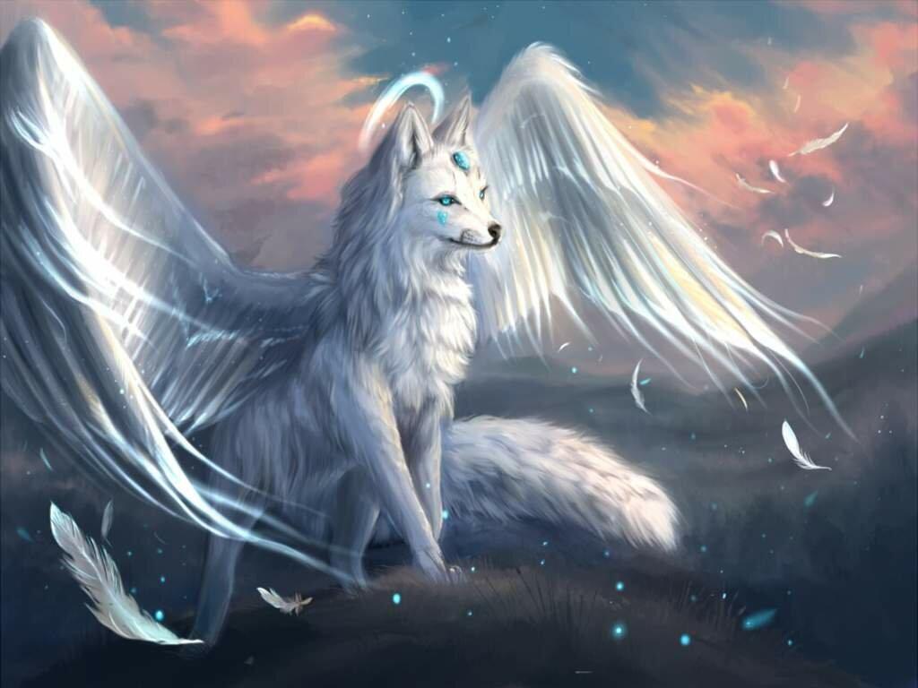 водорослеобразные веревочные волк воздуха картинки романах