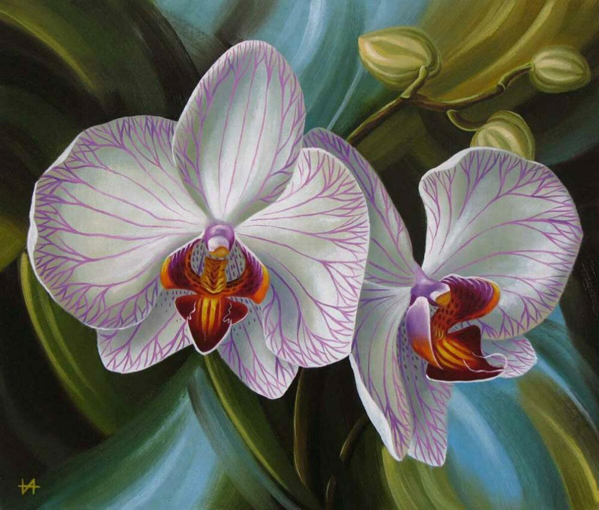 сложная, картина для распечатки орхидея форме