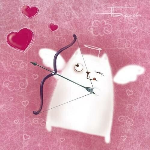 С днем святого валентина картинки кошки
