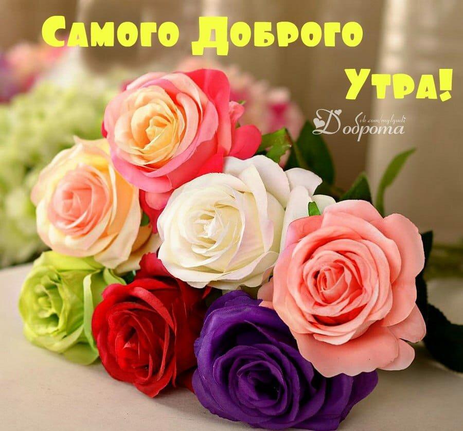 Картинки цветы девушке для хорошего настроения
