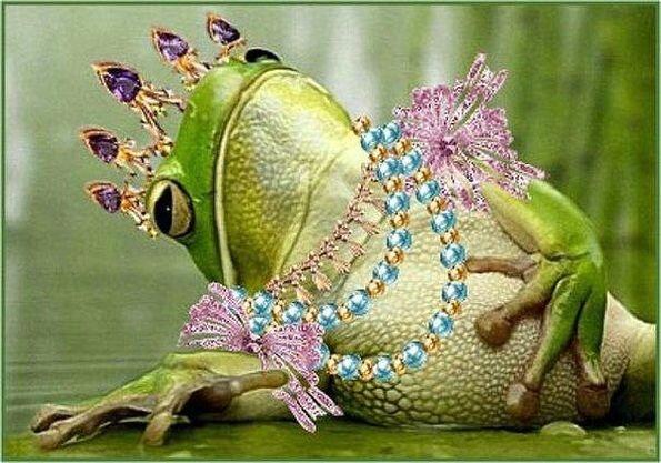 Прикольные картинки королевишна, открытка день победы