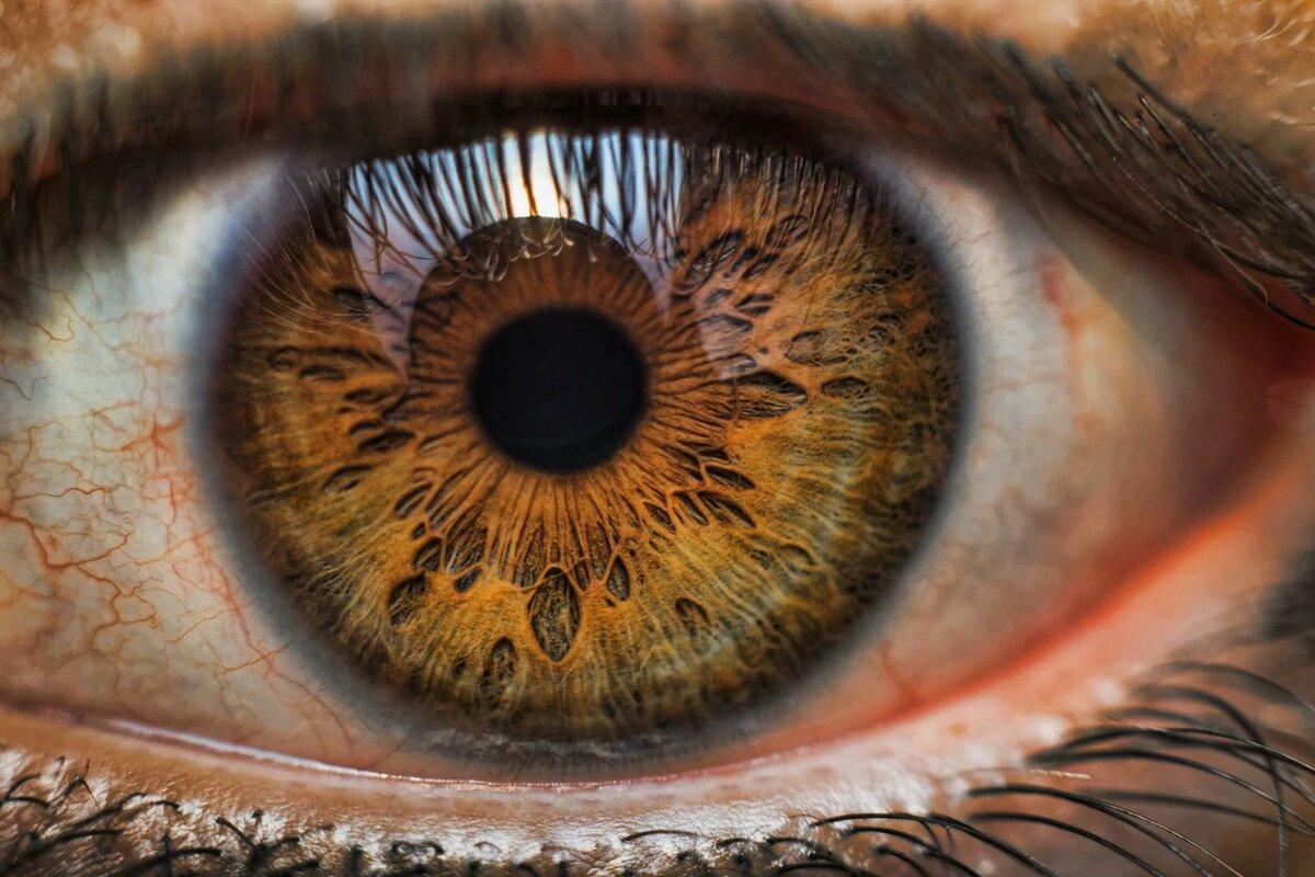 песочные глаза картинки тому интересны мне