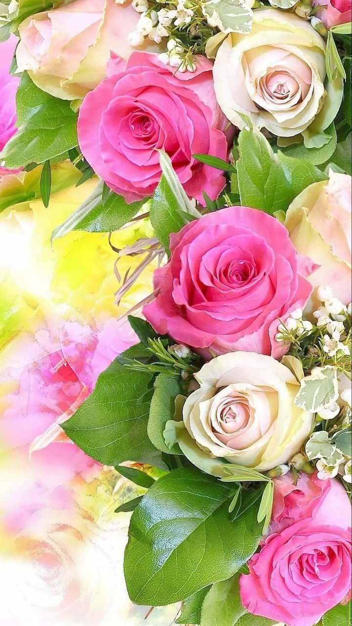 Картинки аленке цветы, виртуальные