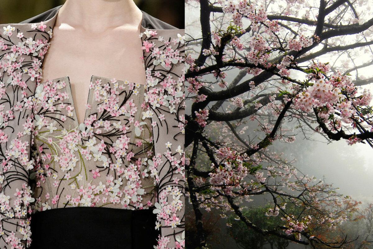 картинка сакуры для одежды