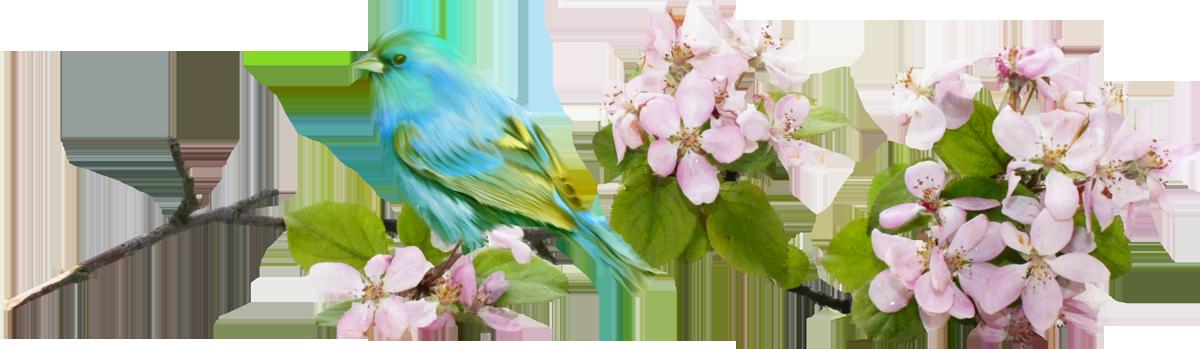 анимация весна без фона оригинальностью характеризуется рецепт
