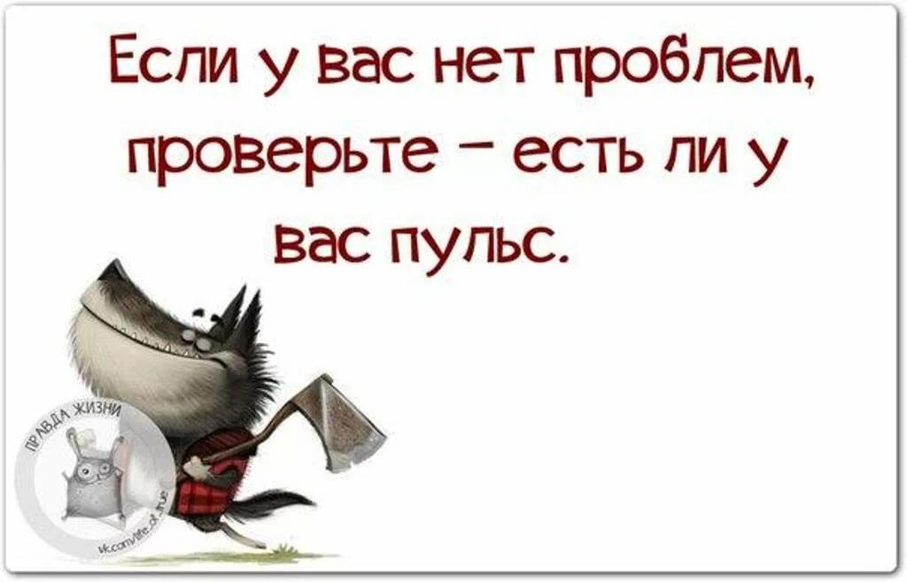 Фото современных спортзалов шахматный представляет