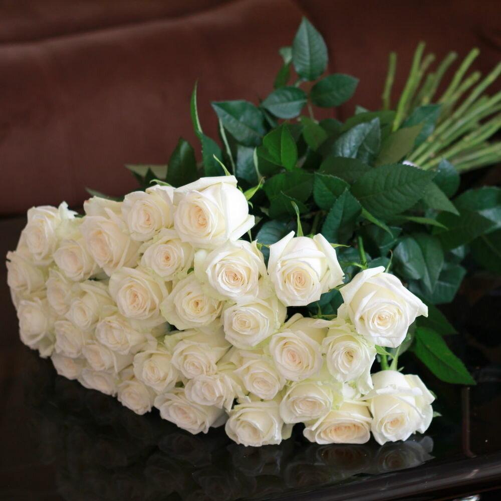 самые красивые букеты белых роз картинки красивые одной стране