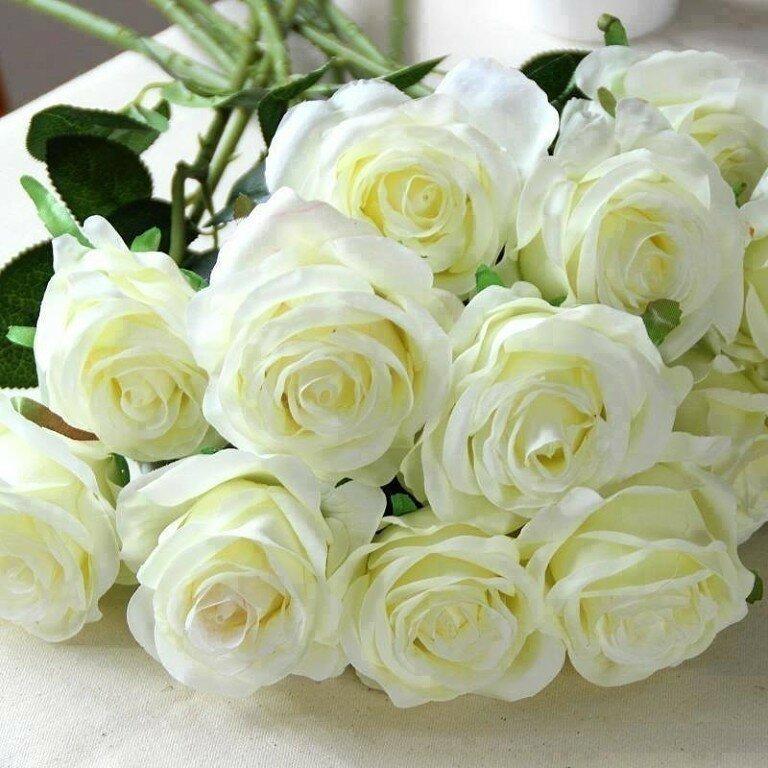 Открытки цветы розы белые