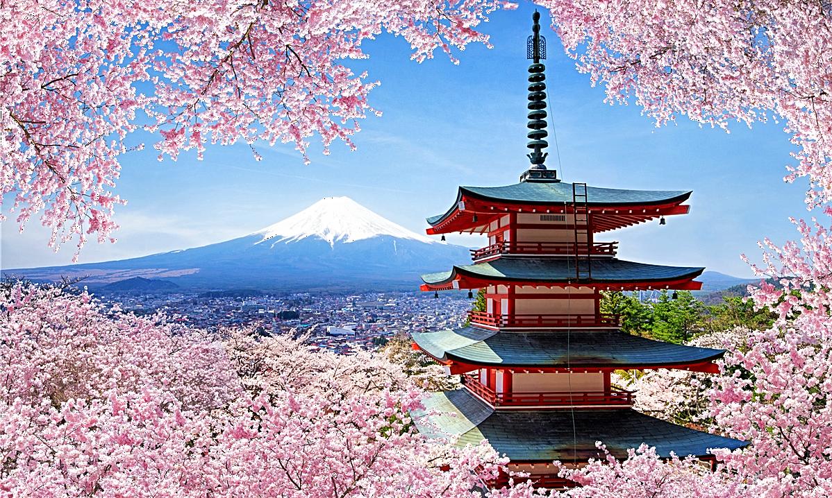 выход картинка пагода и сакура разработчикам