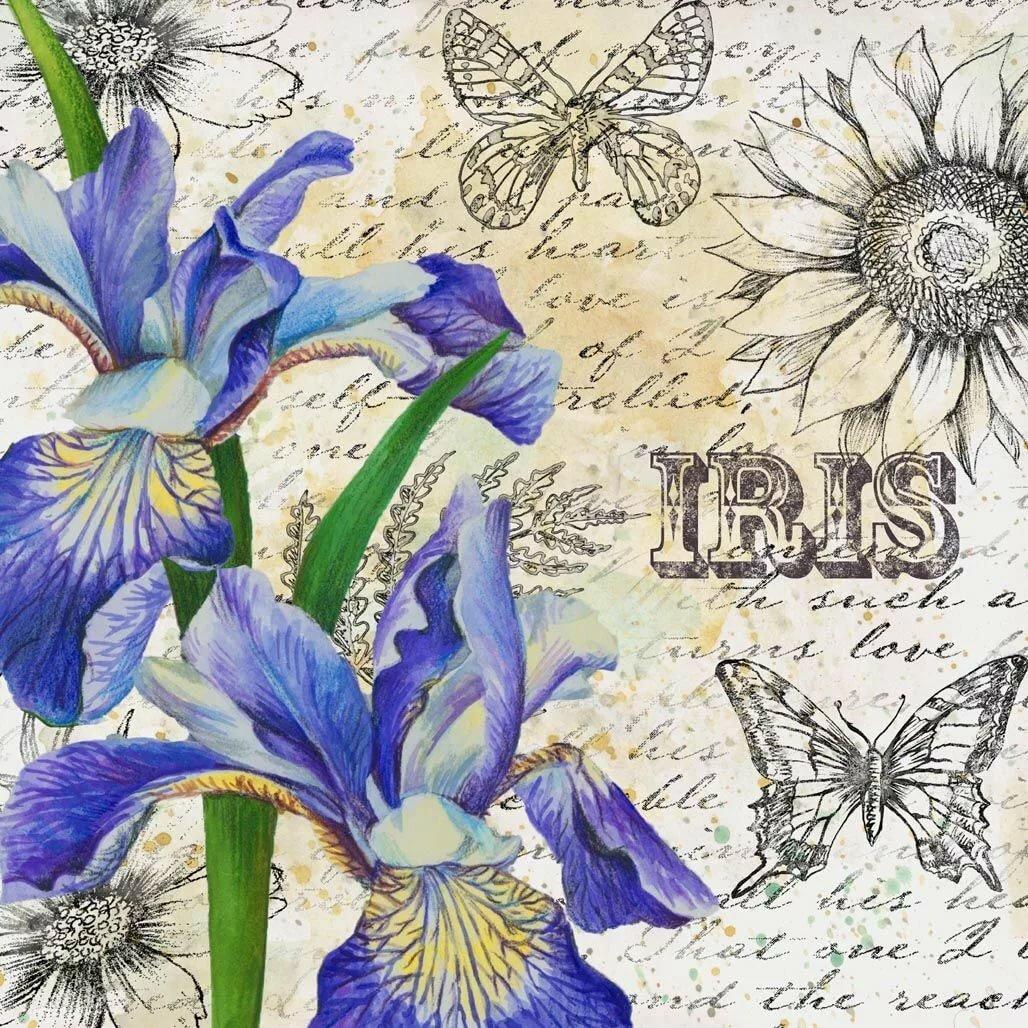 Картинки для декупажа цветы ирисы