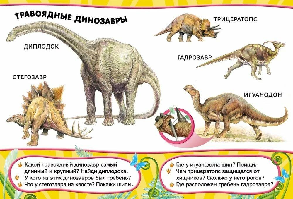Все виды динозавров в картинках и их описание