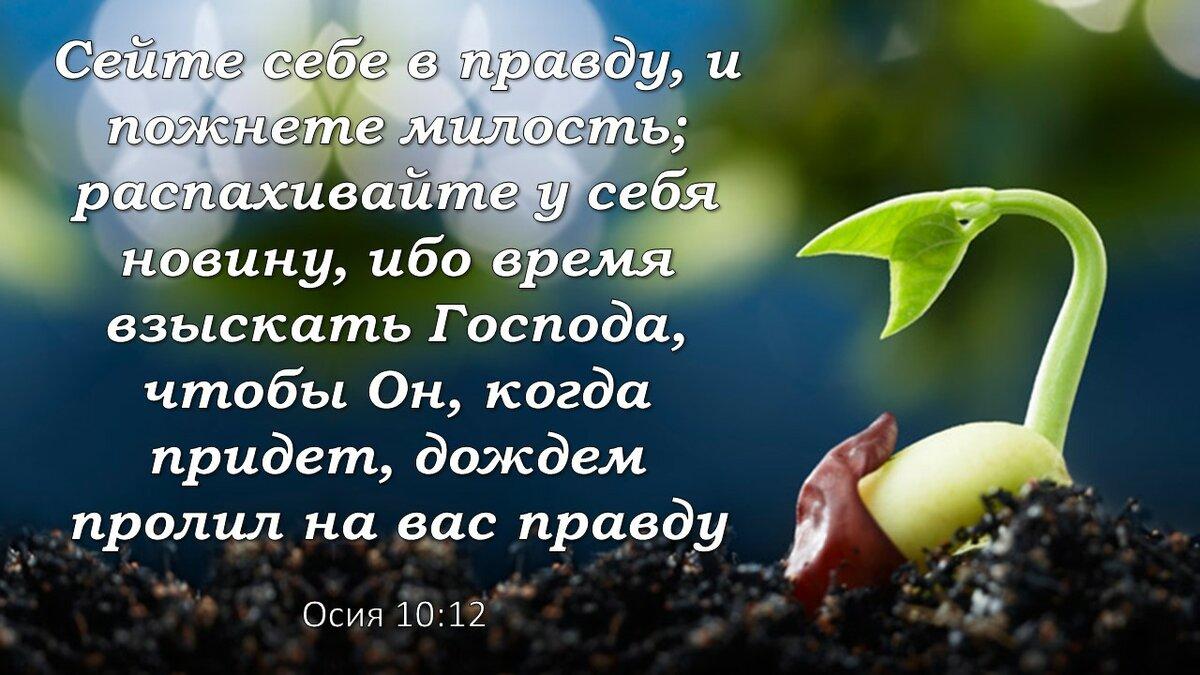 стихи вдохновения из библии работе