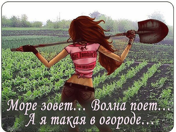 Картинки про огород с надписями смешные