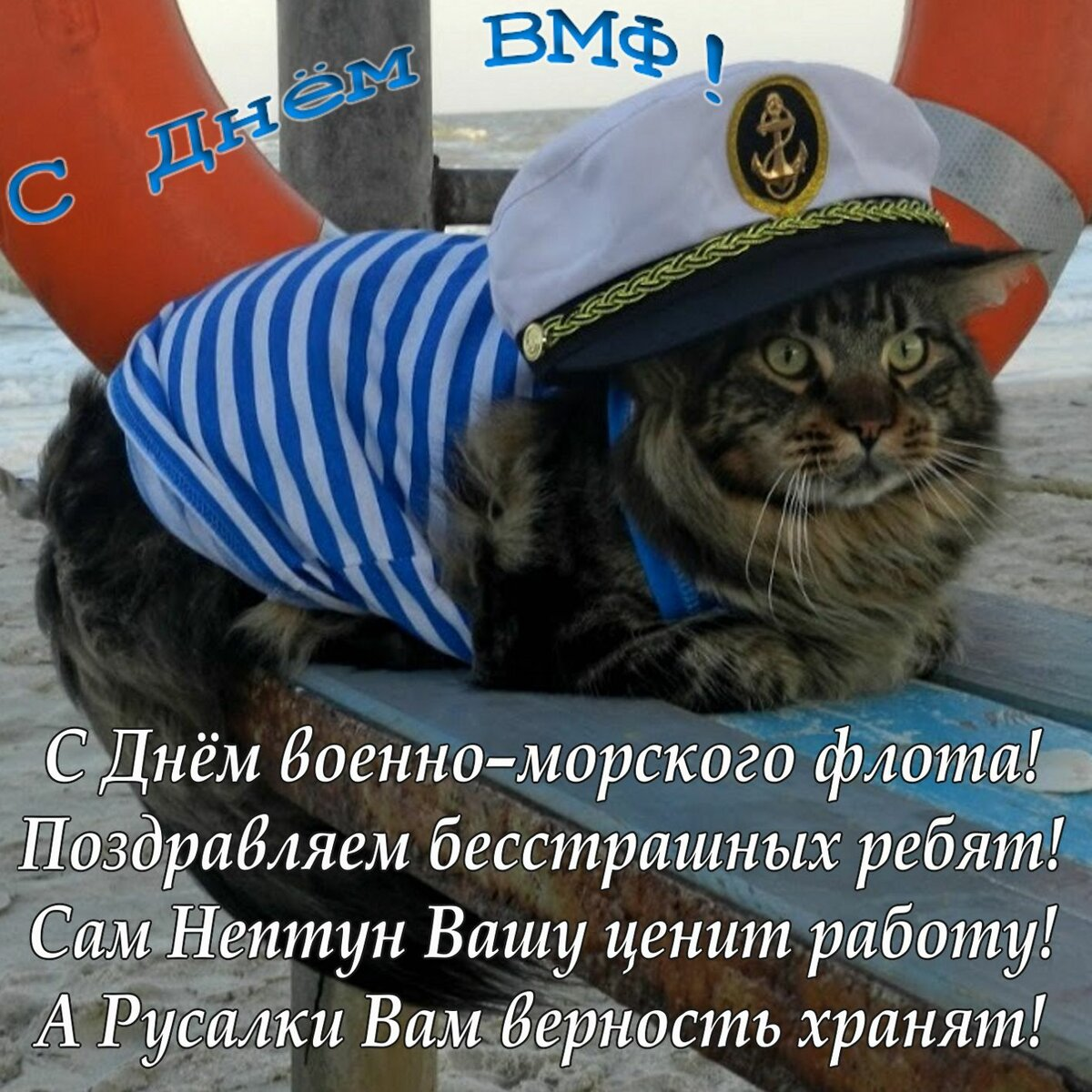 Смешные картинки с днем военно-морского флота, днем