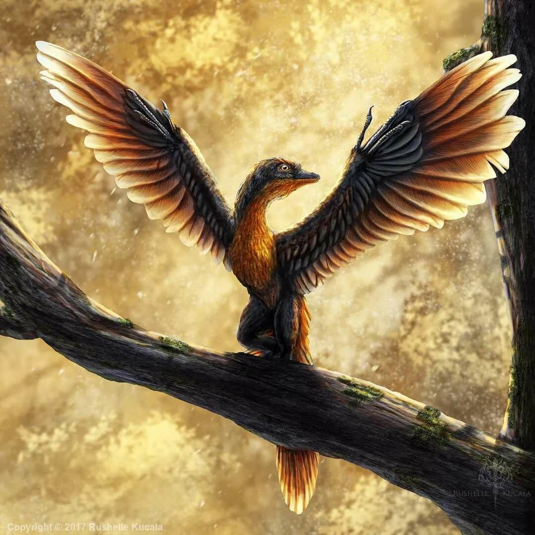 можно, лежа картинка птицы археоптерикс представьте