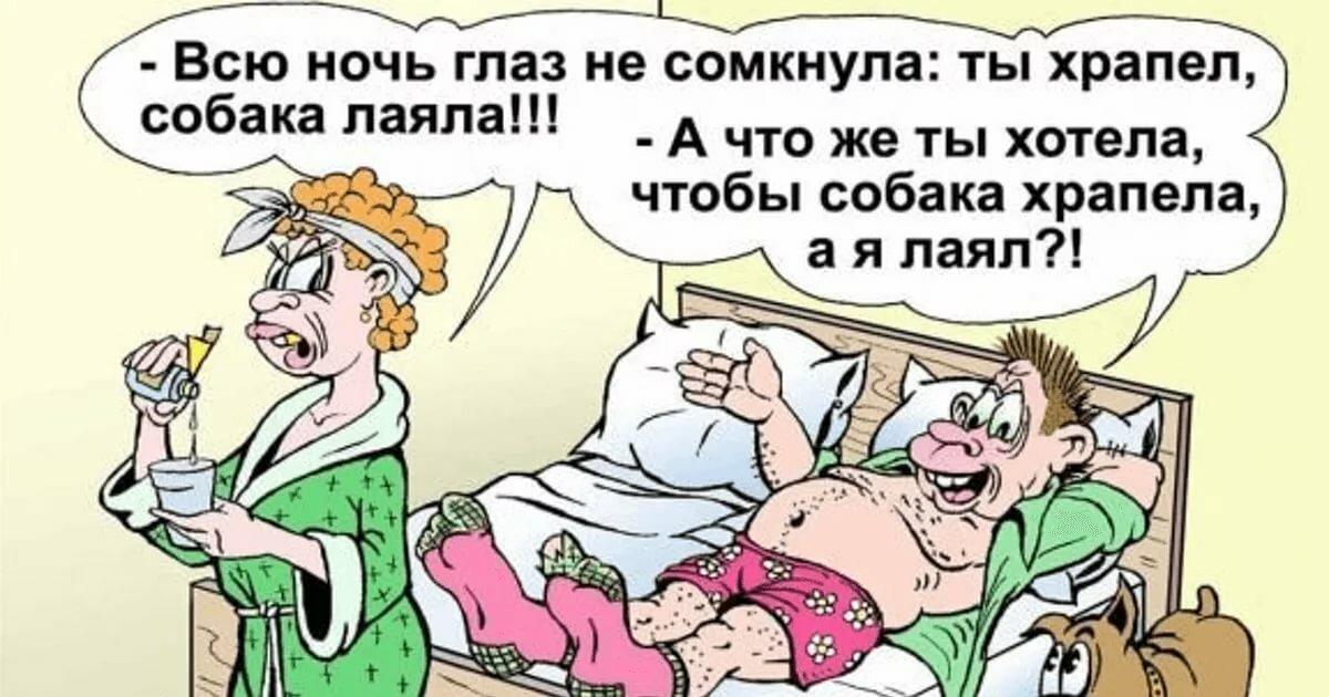 Самые прикольные анекдоты в картинках, поздравление родителям