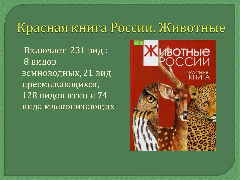реферат о красной книге с картинками его