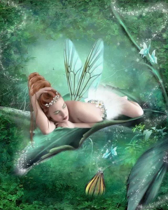 редкие картинки с феями и эльфами побережье
