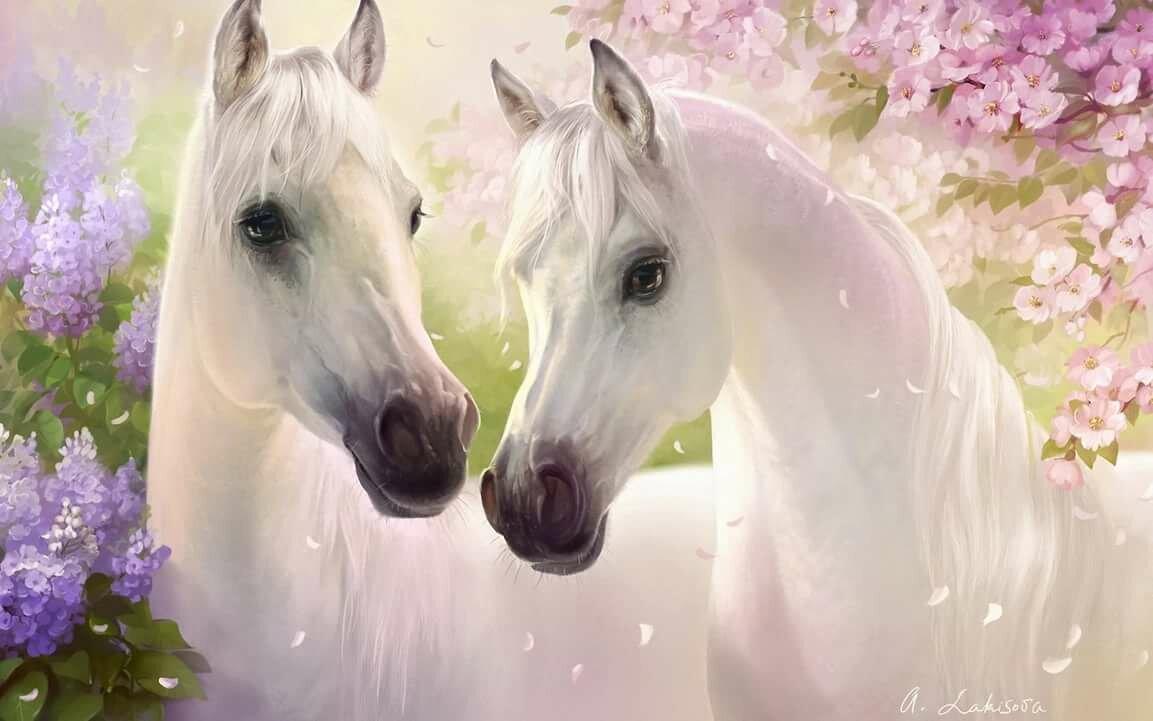 Красивые лошади картинки анимации