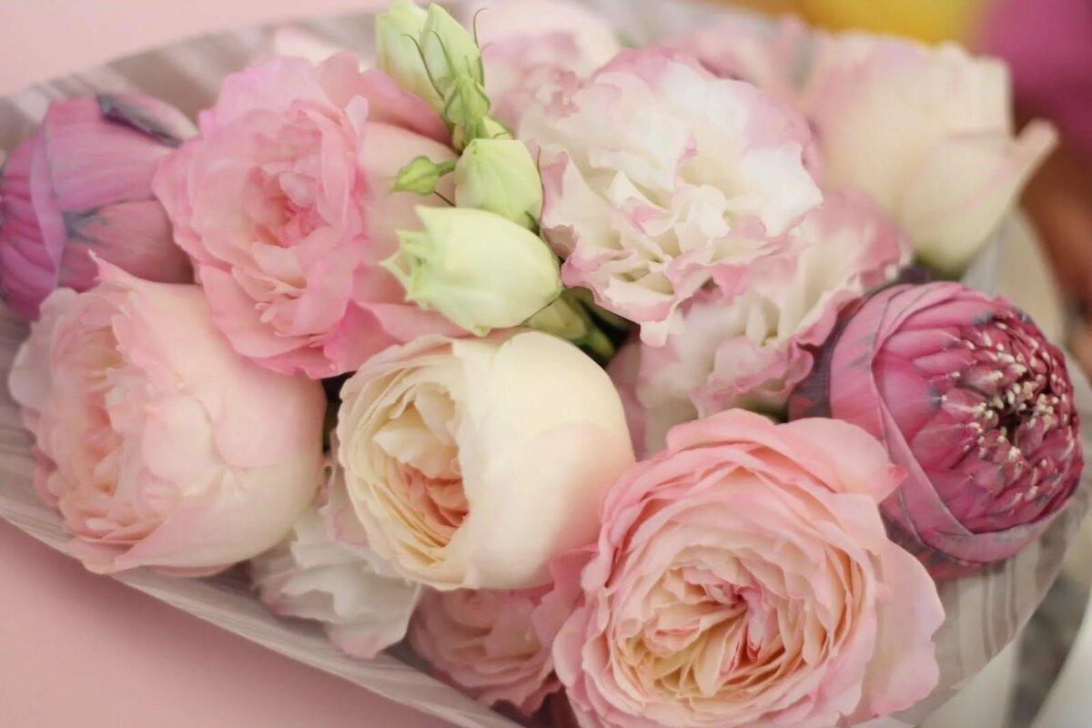 Красивые открытки с розами пионовидными, песком