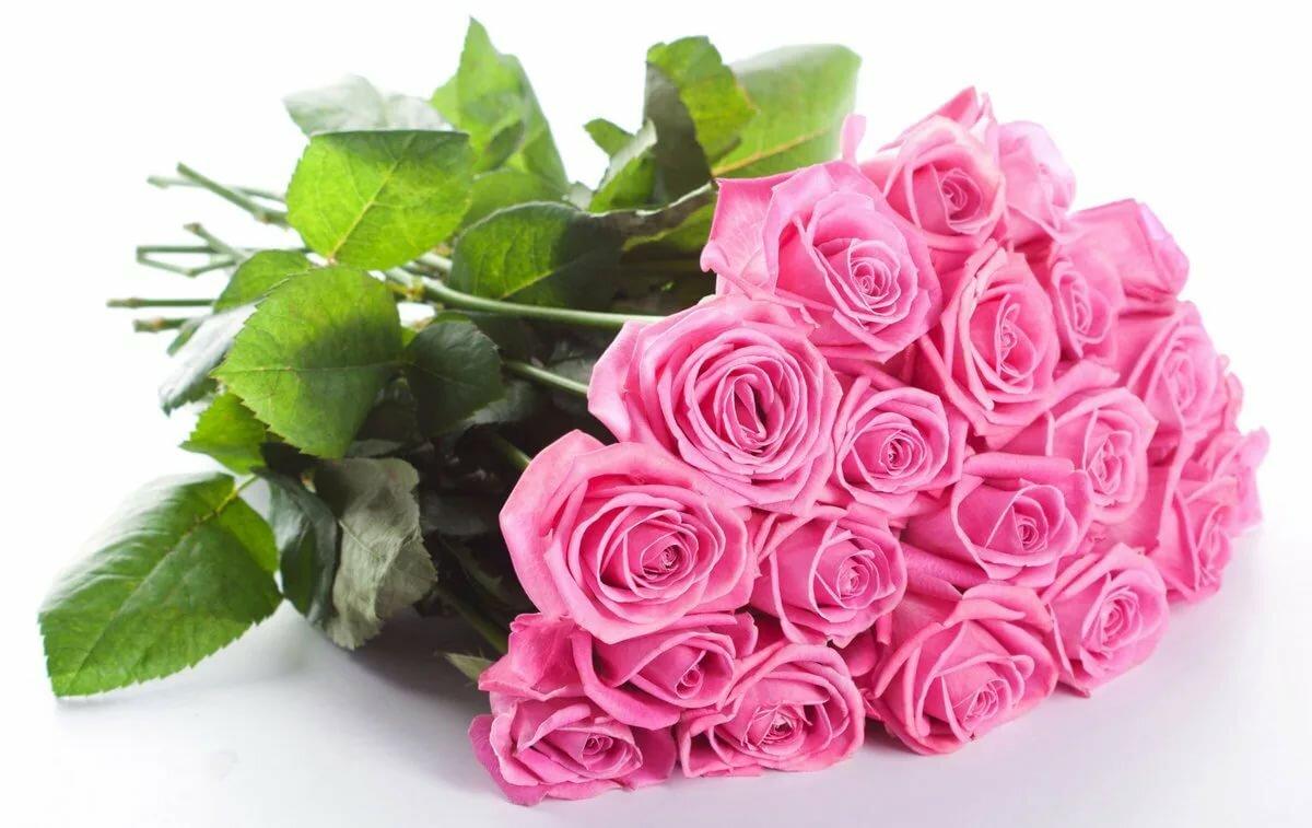Красивые открытки с днем рождения большие цветы, отдыха